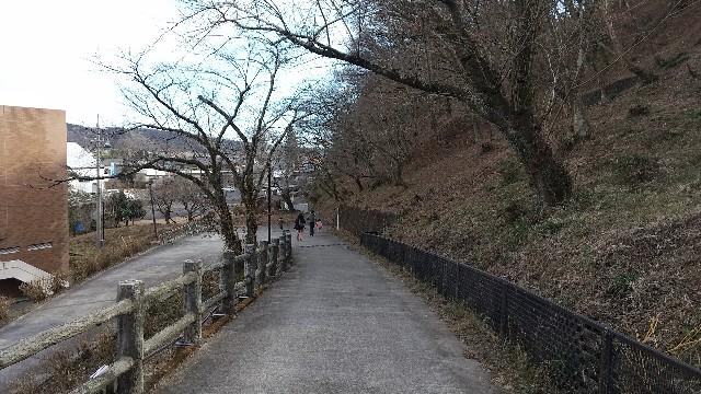 f:id:haru-to-bIke:20210110223859j:image