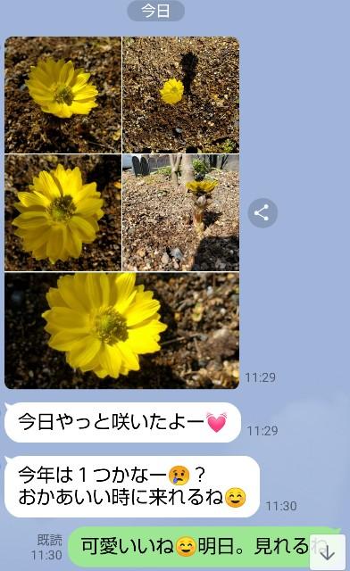 f:id:haru-to-bIke:20210221120545j:image