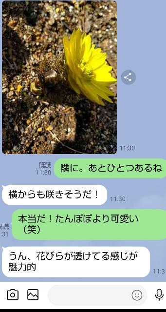 f:id:haru-to-bIke:20210221120558j:image