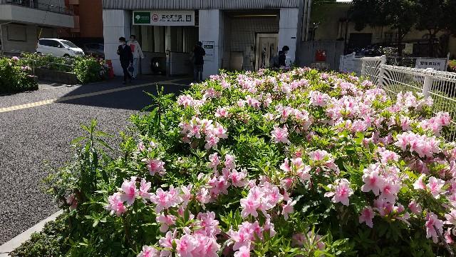 f:id:haru-to-bIke:20210409153500j:image