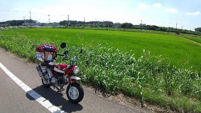 f:id:haru-to-bIke:20210722050502j:image