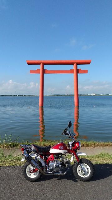 f:id:haru-to-bIke:20210730105456j:image