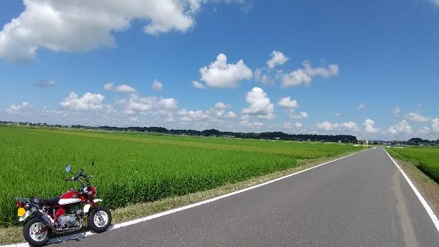 f:id:haru-to-bIke:20210802140543j:image