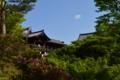 京都新聞写真コンテスト 東福寺の春