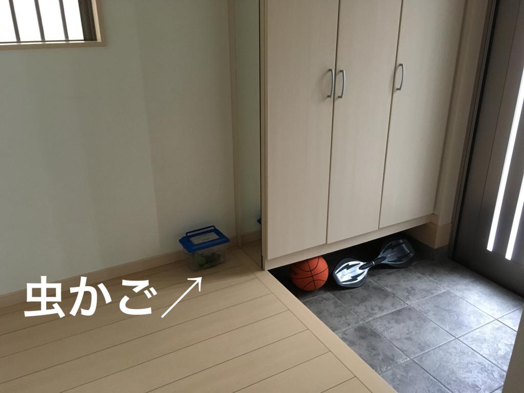 f:id:haru501227:20160725161410j:plain