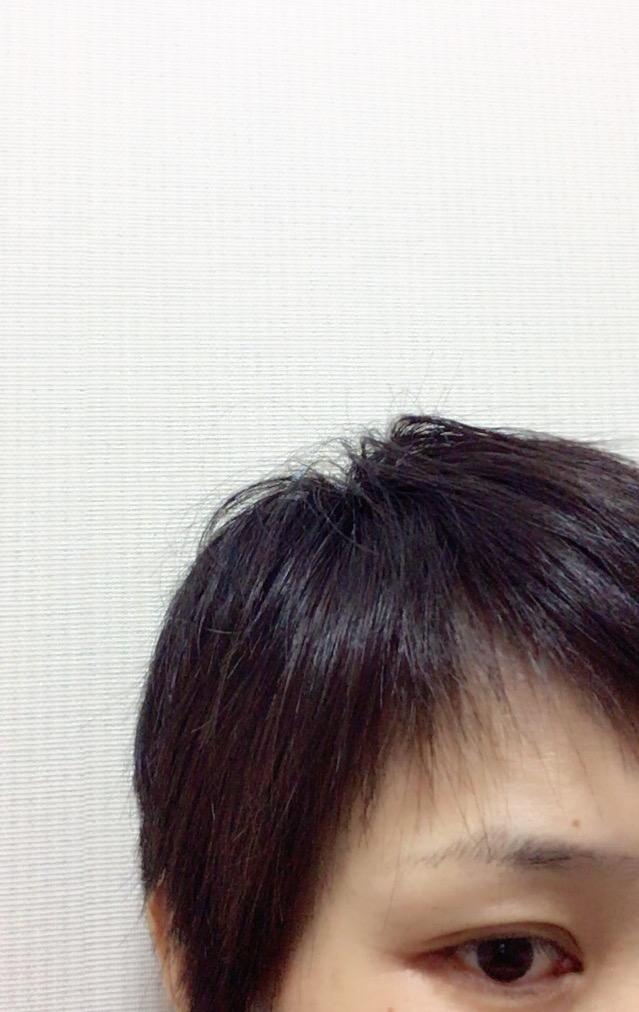 f:id:haru501227:20161031214746j:plain