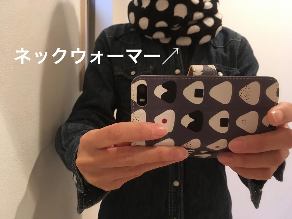 f:id:haru501227:20161127104131j:plain