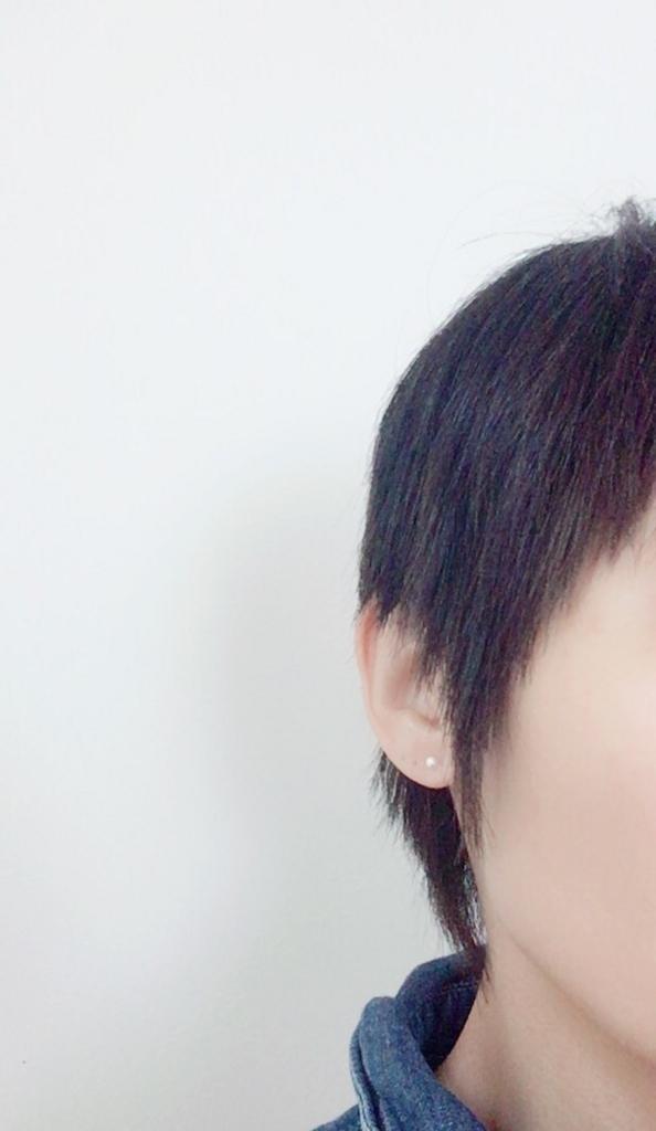 f:id:haru501227:20170307100907j:plain