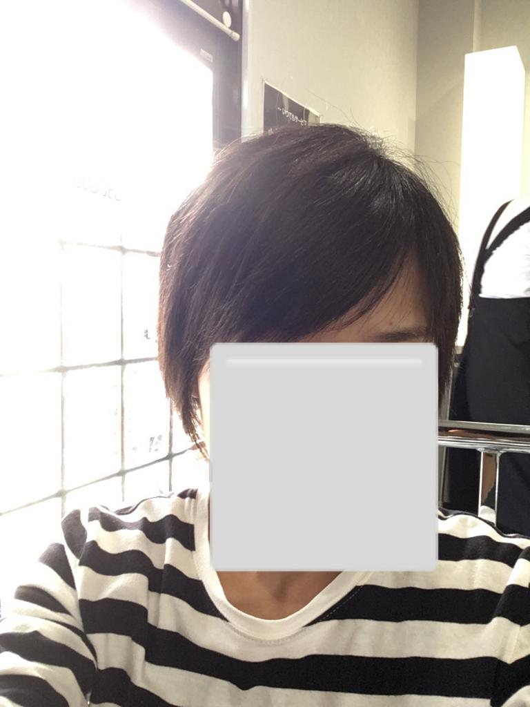 f:id:haru501227:20171005211219j:plain