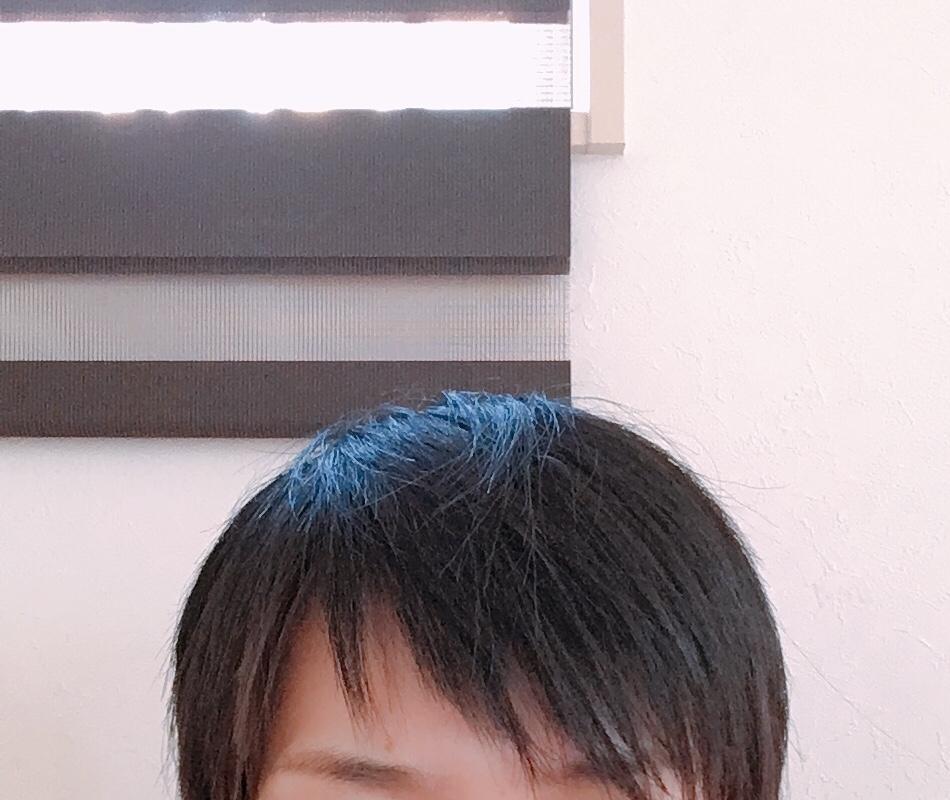 f:id:haru501227:20180625171324j:plain