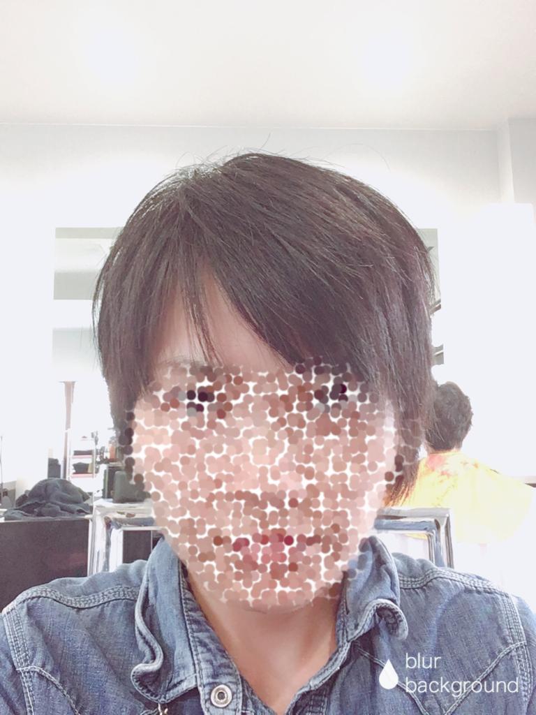 f:id:haru501227:20181005214619p:plain