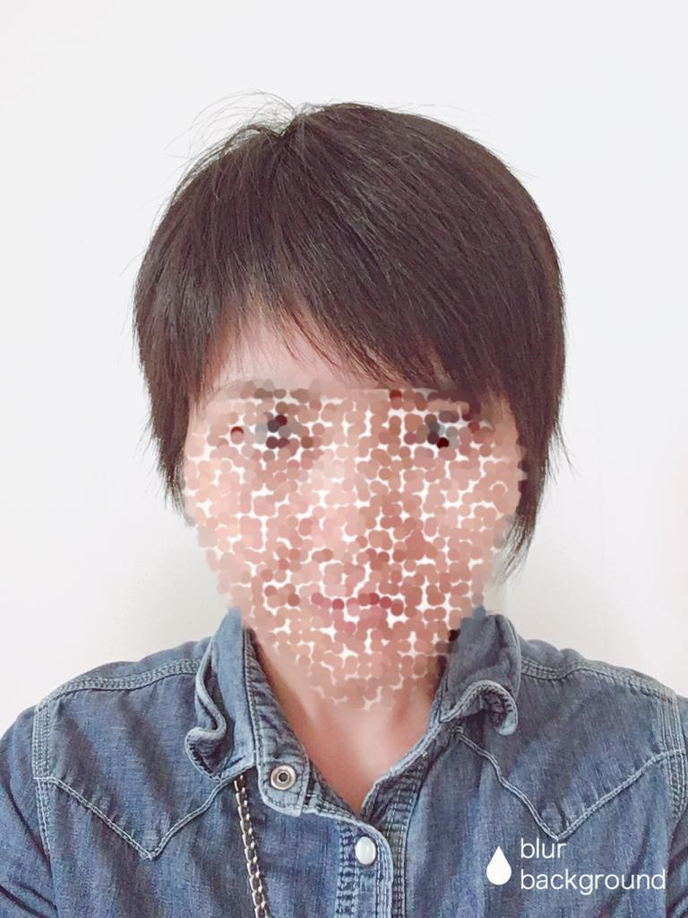 f:id:haru501227:20181005214637p:plain