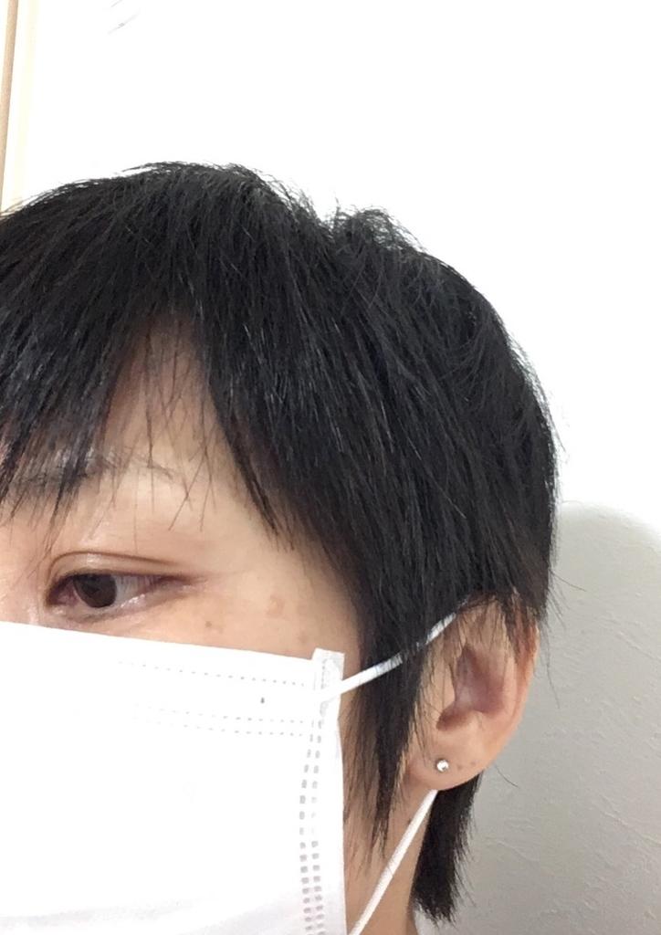 f:id:haru501227:20181205220640j:plain