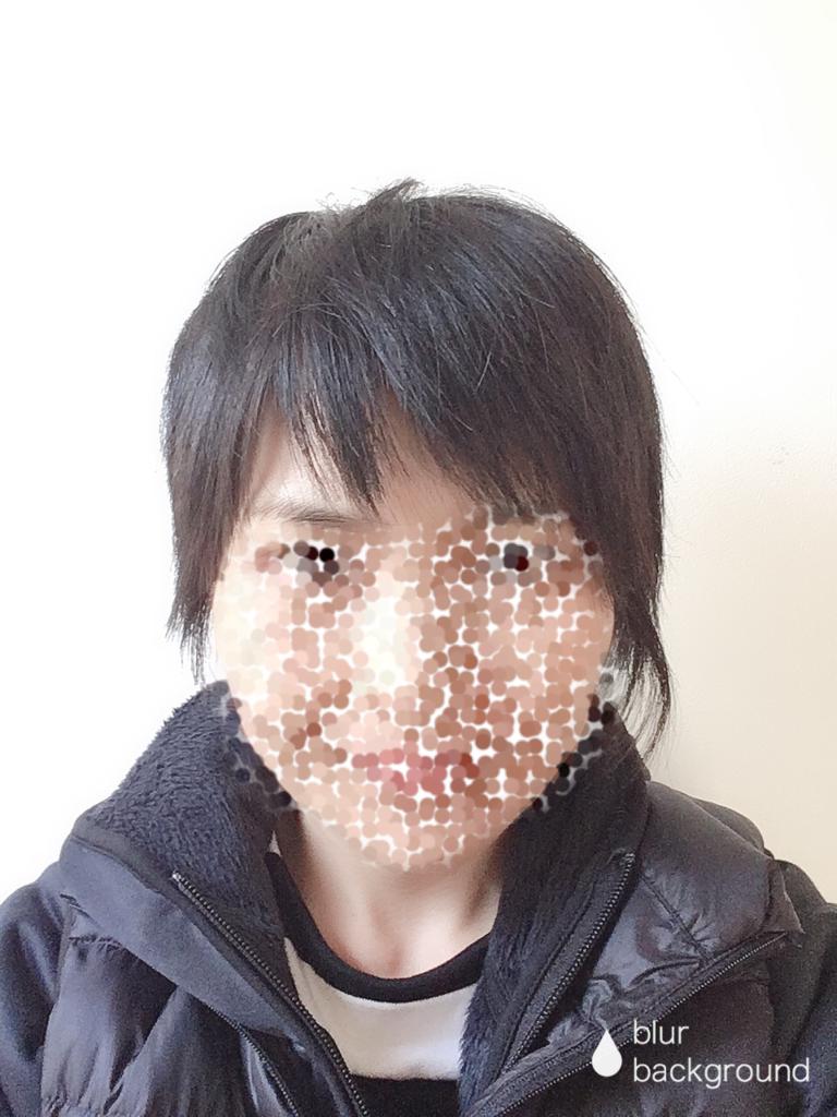 f:id:haru501227:20190305231005p:plain