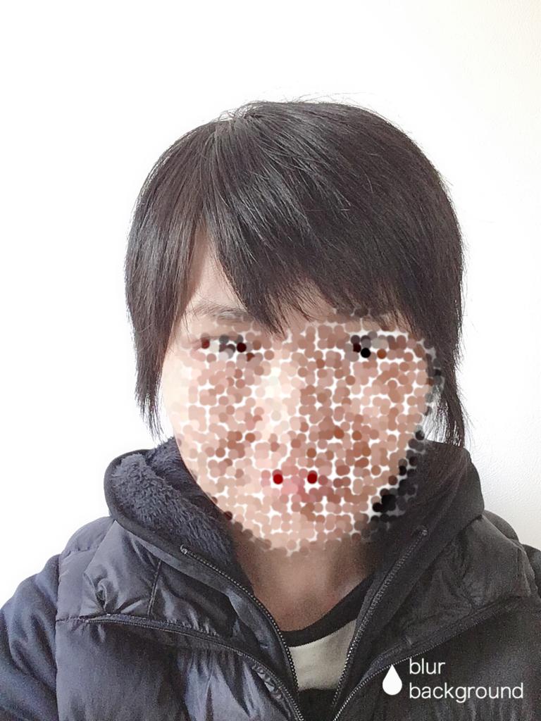 f:id:haru501227:20190305231802p:plain