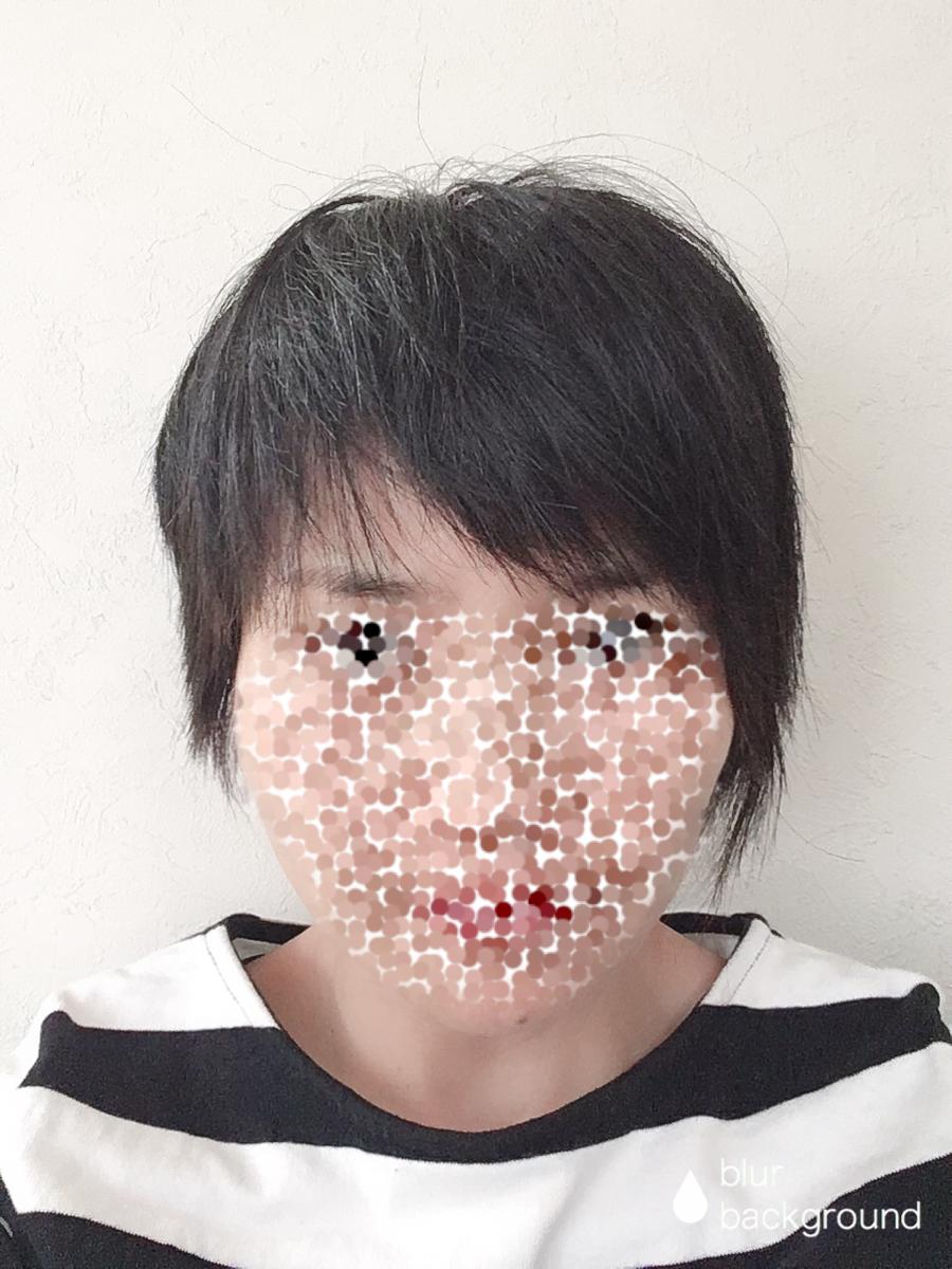 f:id:haru501227:20190410215827p:plain