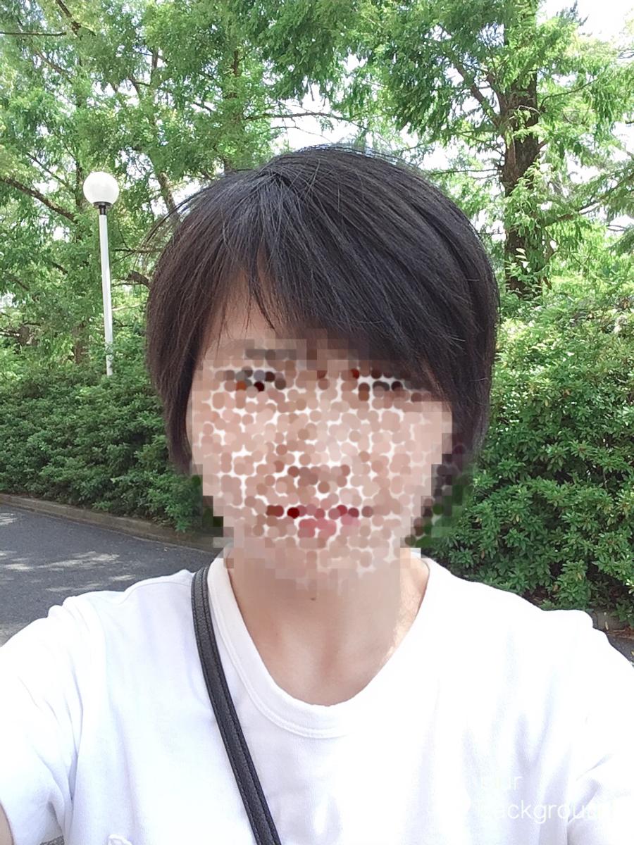 f:id:haru501227:20190628224816p:plain