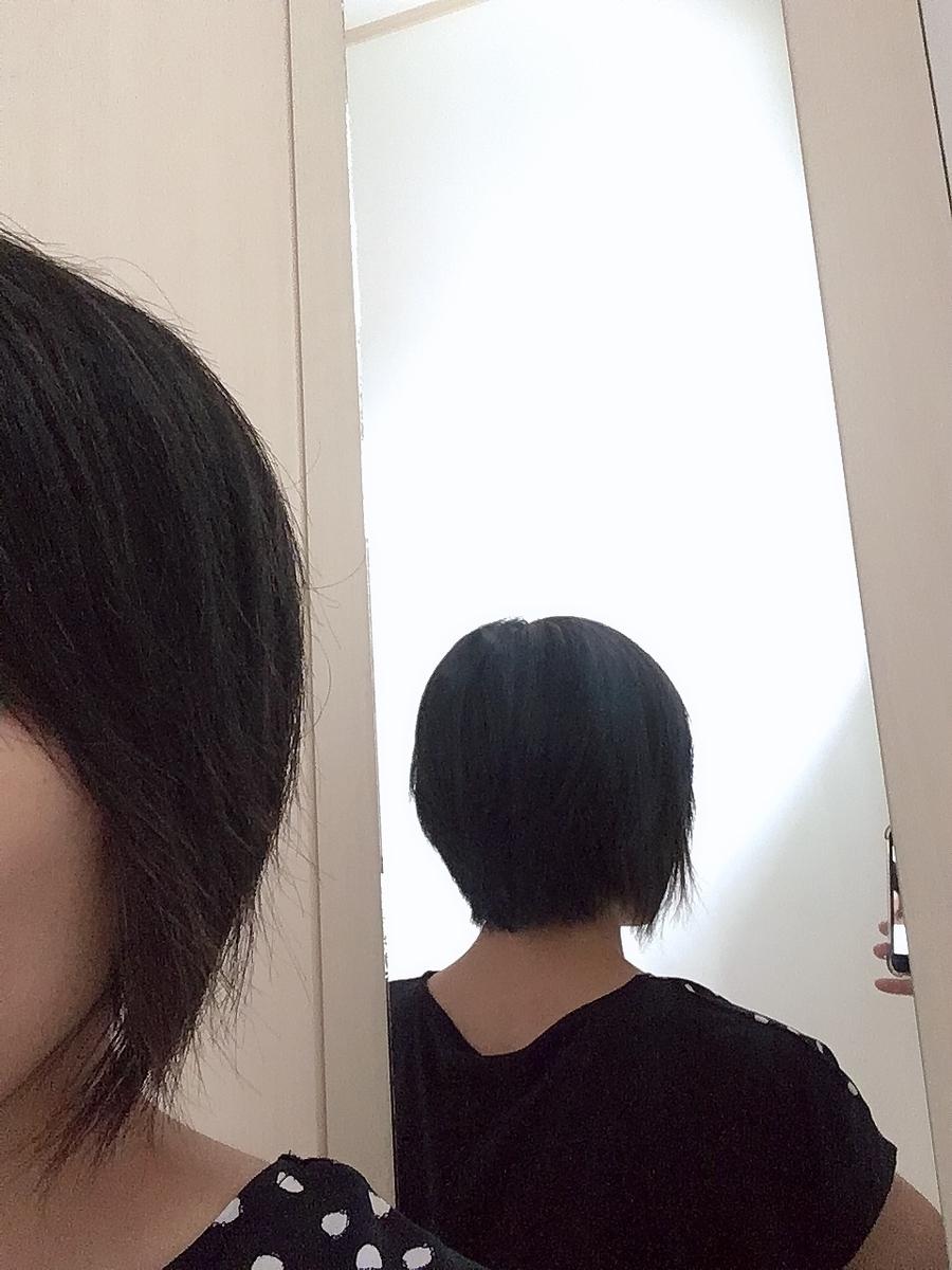 f:id:haru501227:20190830222619j:plain