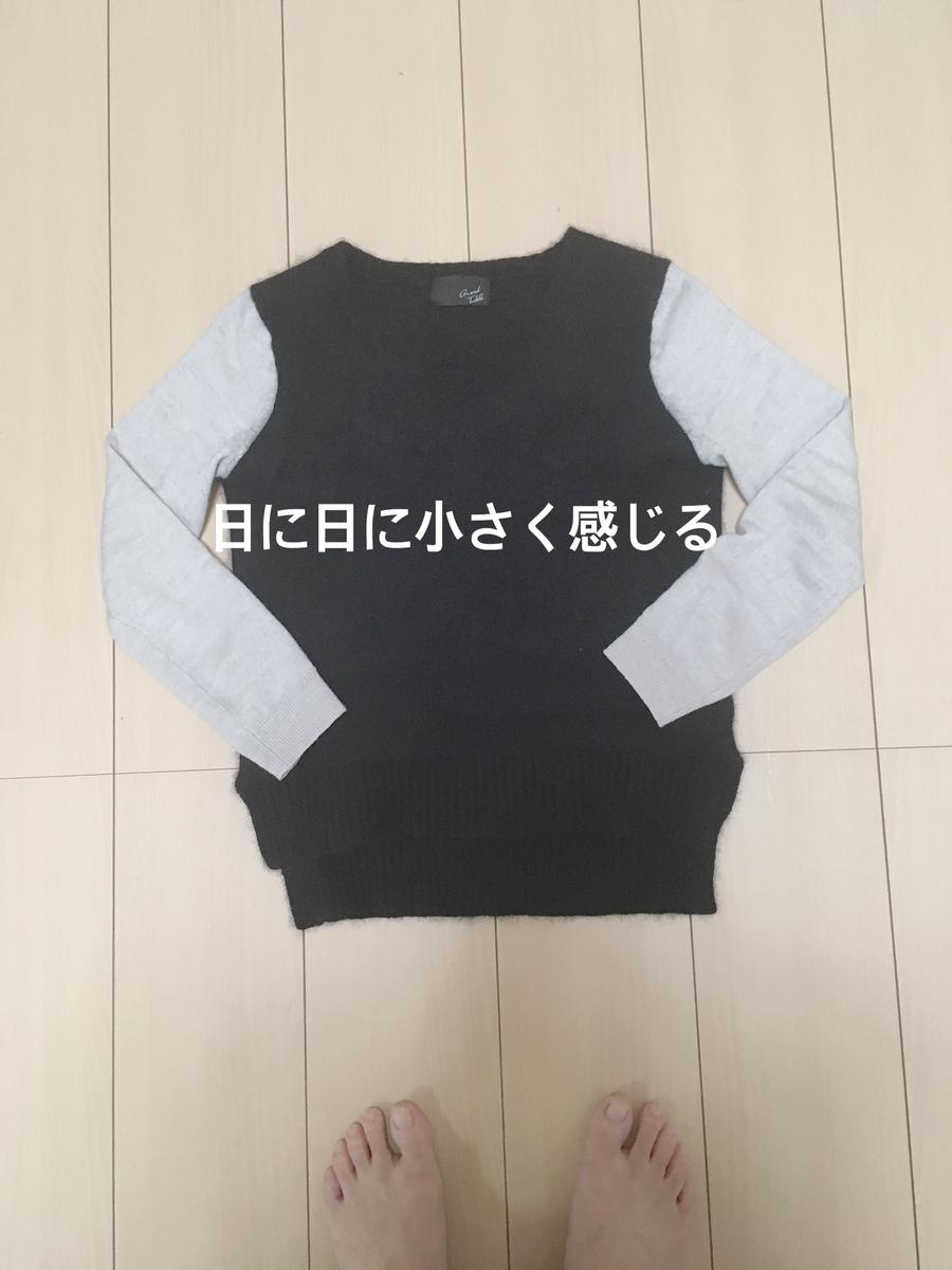 f:id:haru501227:20200111224421j:plain