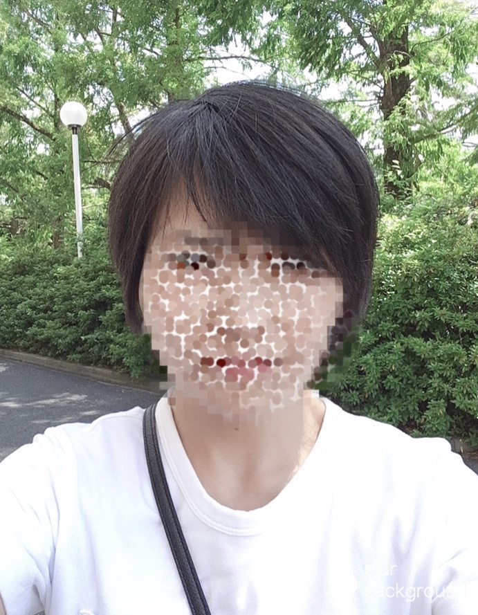 f:id:haru501227:20200906232826j:plain