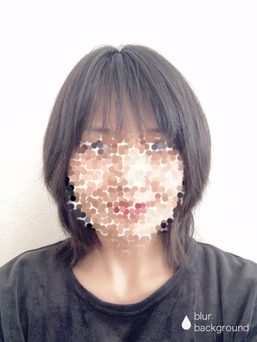 f:id:haru501227:20201128211257p:plain