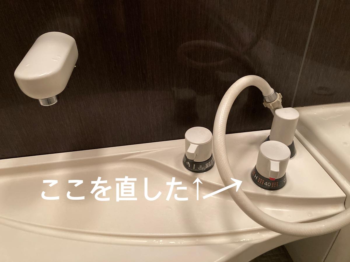 f:id:haru501227:20201207221540j:plain