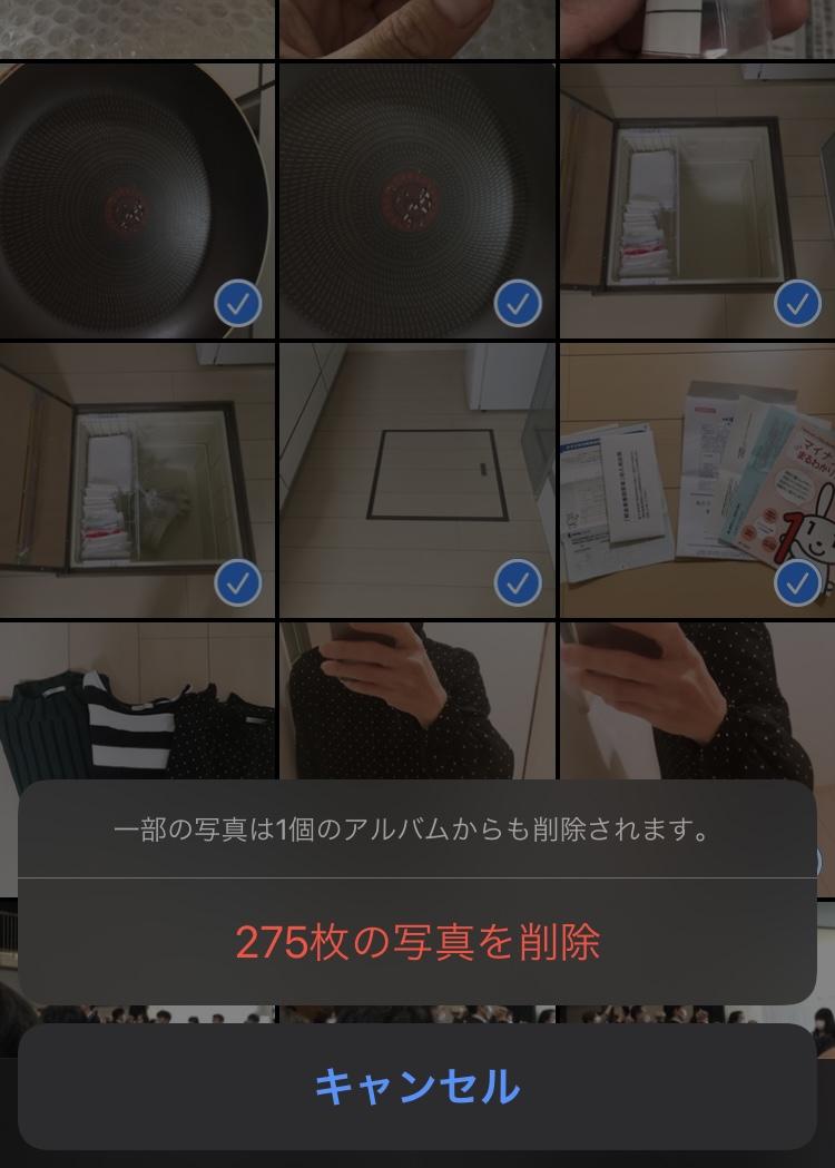 f:id:haru501227:20210130222215j:plain
