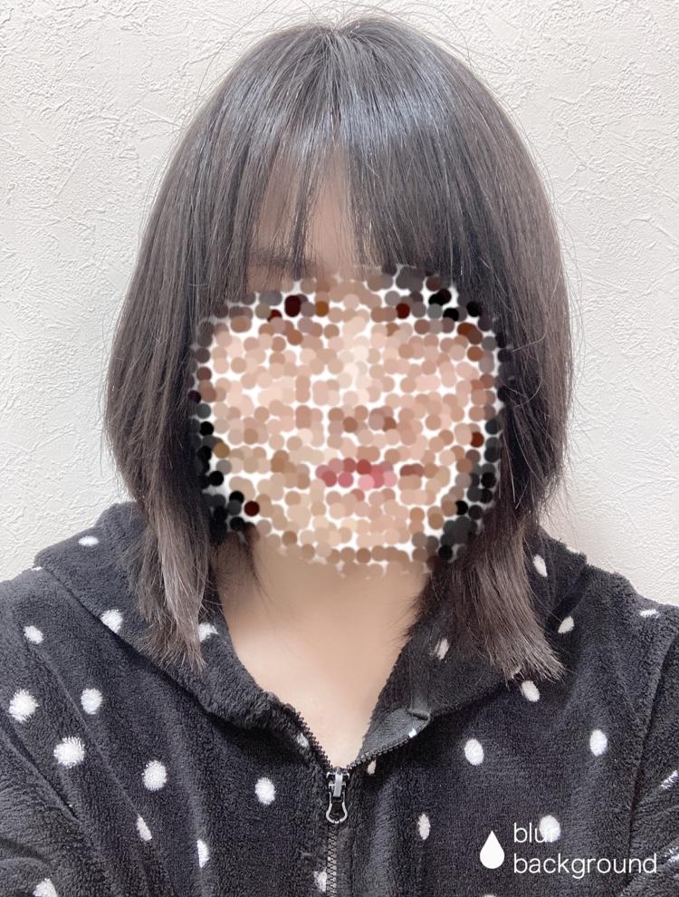 f:id:haru501227:20210212231323j:plain