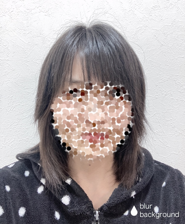 f:id:haru501227:20210212231347j:plain