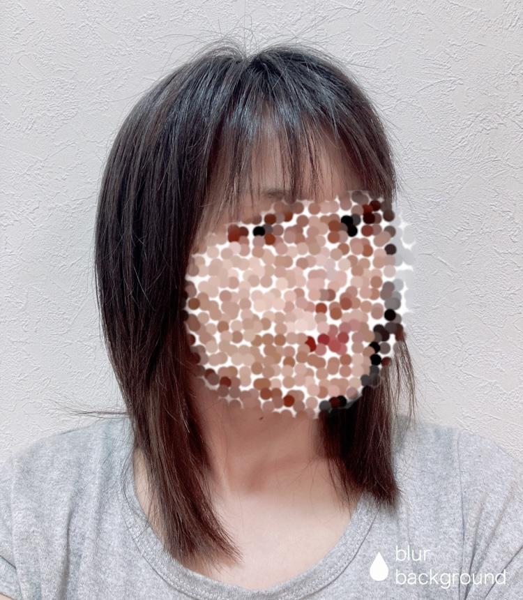 f:id:haru501227:20210527215110j:plain