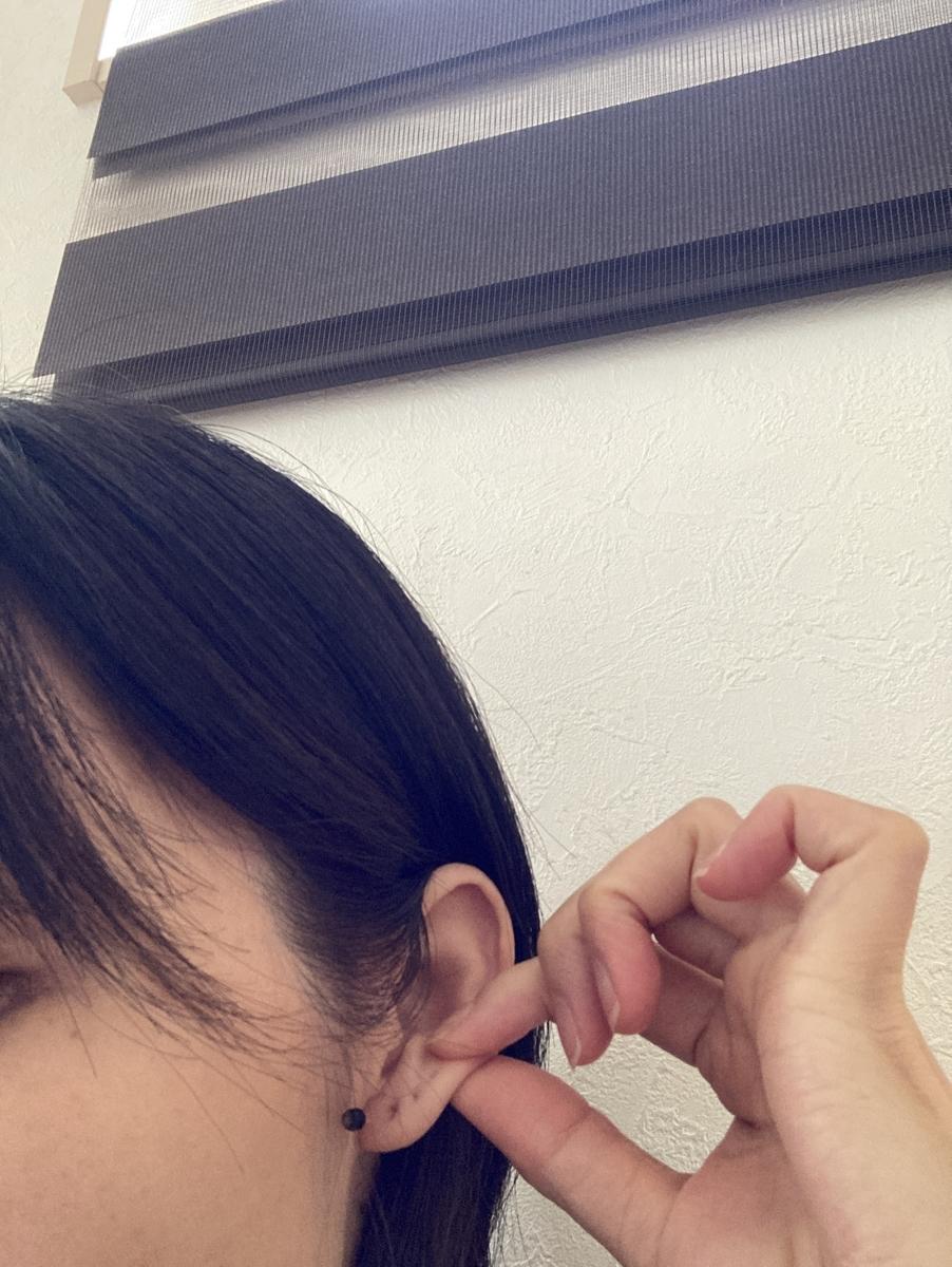 f:id:haru501227:20210706162432j:plain