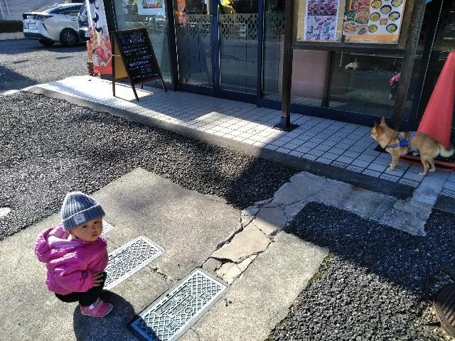 f:id:haru5200:20171216152747j:image