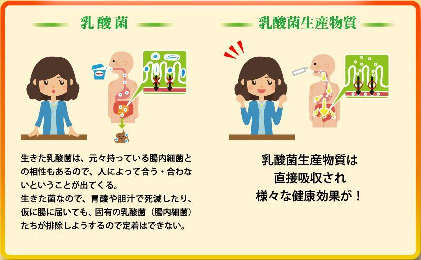 f:id:haru72lemone:20180518030110j:plain