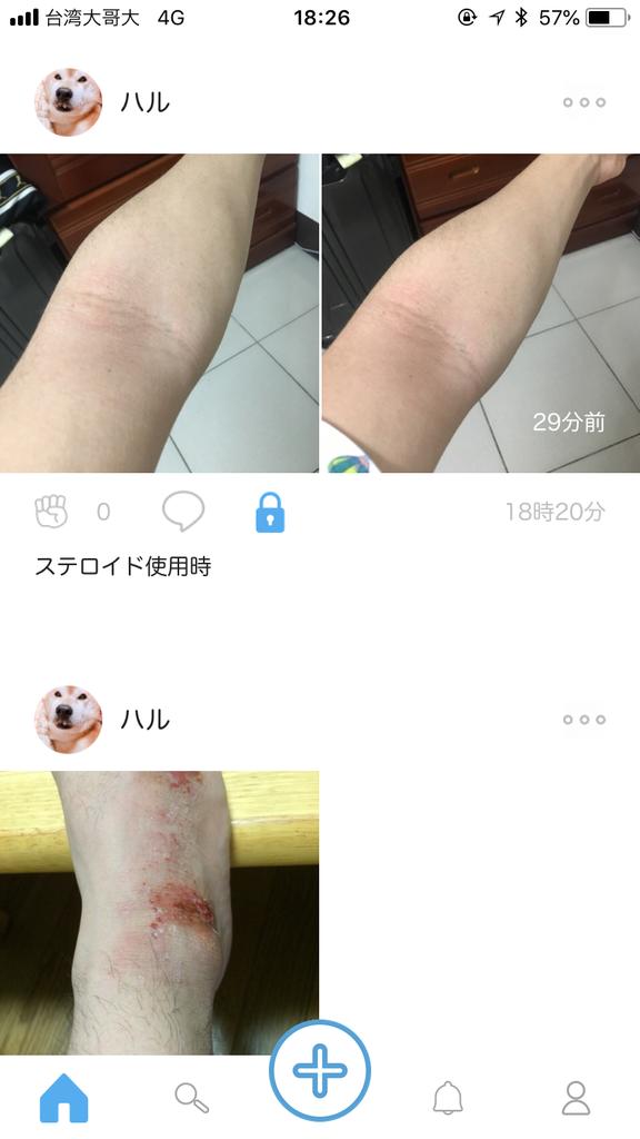 f:id:haru_chize:20190207192739p:plain