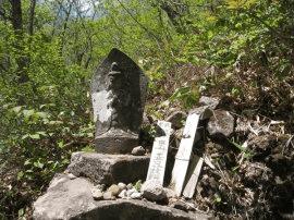 長野 おすすめ 観光 8-3-1-1