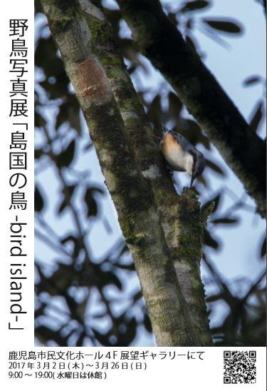 f:id:haru_hobby:20170304003410j:plain