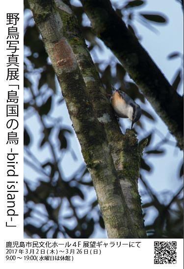 f:id:haru_hobby:20170621193136j:plain