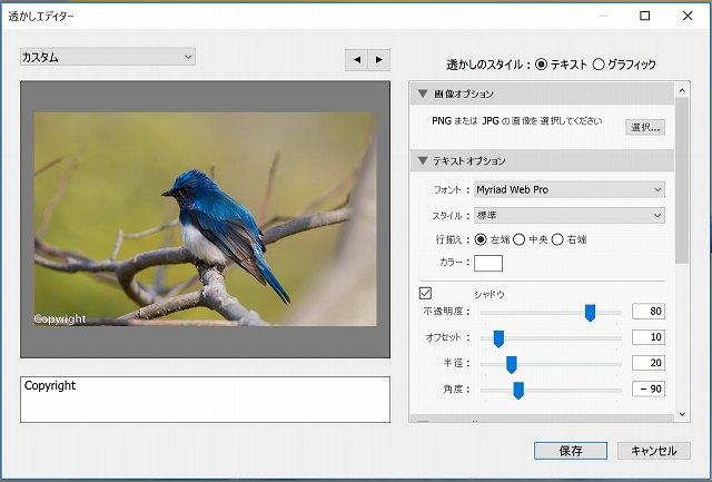 f:id:haru_hobby:20170706155117j:plain