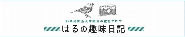 f:id:haru_hobby:20170802035042j:plain