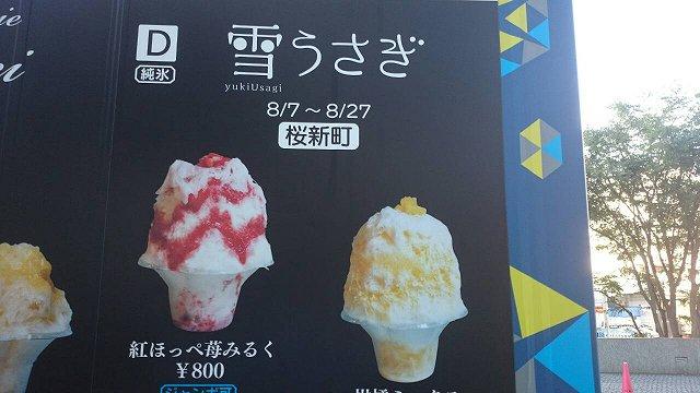 f:id:haru_hobby:20170827120619j:plain