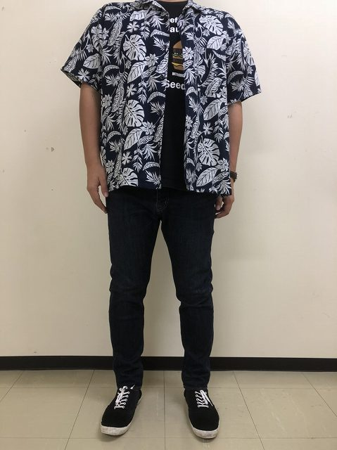 f:id:haru_hobby:20181006090252j:plain