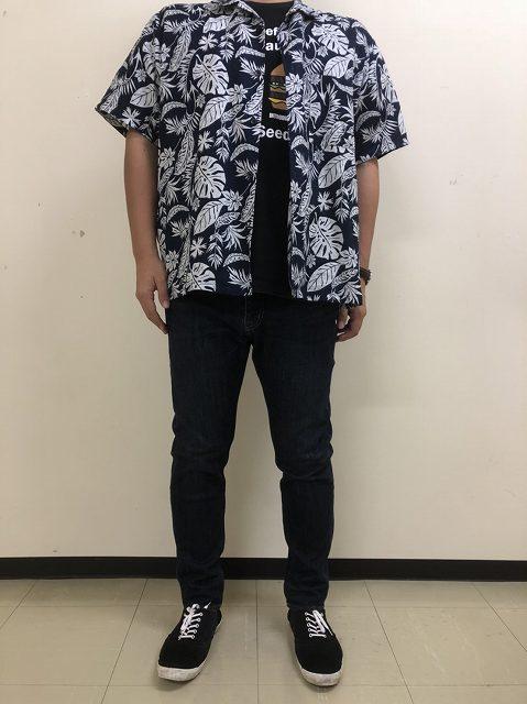 f:id:haru_hobby:20181006091832j:plain