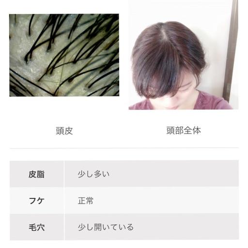f:id:haru_pom:20200124023639j:image