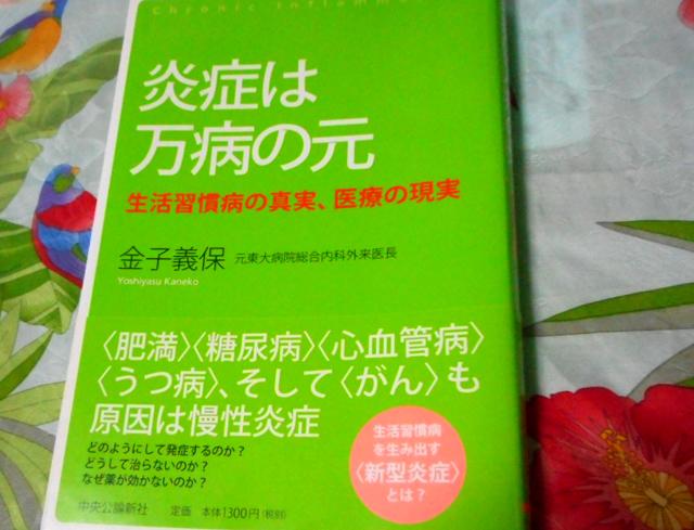 金子義保『炎症は万病の元 生活習慣病の真実、医療の現実』