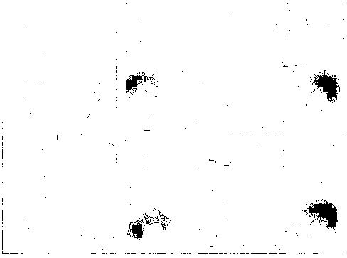 f:id:harubara:20150112230603p:plain