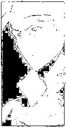 f:id:harubara:20150211212402p:plain