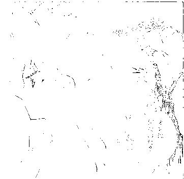 f:id:harubara:20150222152637p:plain