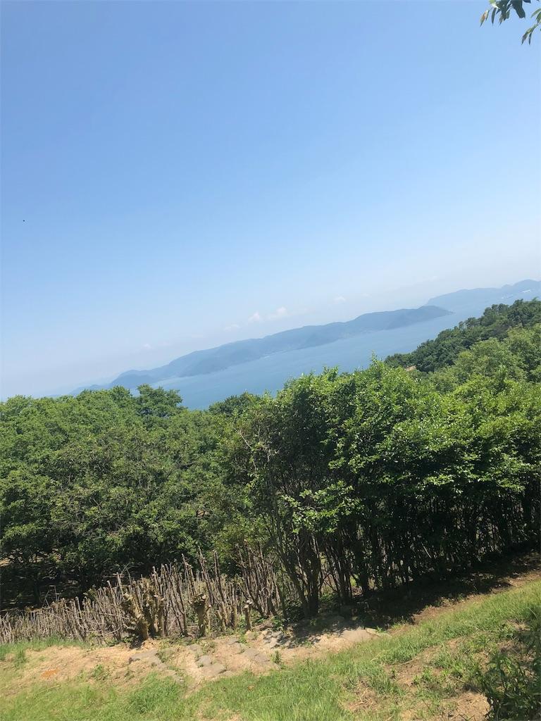 f:id:harucinesu:20180602194356j:image