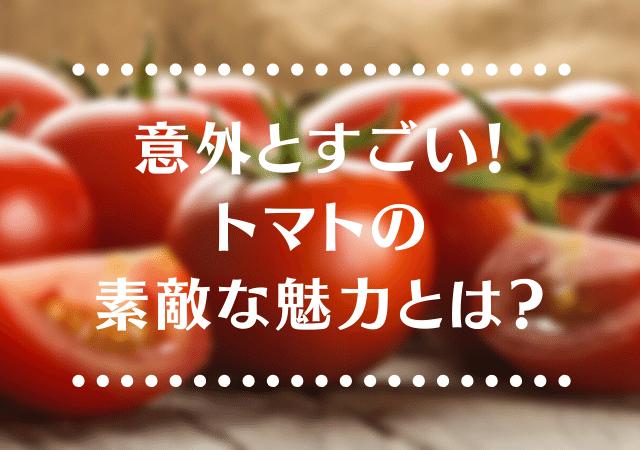 f:id:harucu_te:20200411165438p:plain