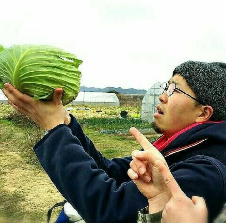 f:id:haruka-kubo33:20170504232014j:plain